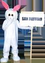 SanRuffino_mascotte_orig